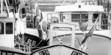 Husker du: Hvide Sande fiskeri?
