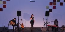 Julekoncert med Anne Dorte Michelsen