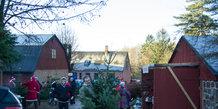Jul i Skrald Skovridergård