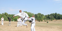 Taekwondo i mindeparken