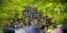 Aarhus MTB Marathon DM XCM 2019