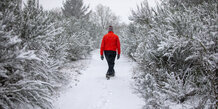 På vandretur i Mols Bjerge i sneen